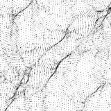 Abstract vector monochrome wave mesh background. Point cloud array. Chaotic light waves. Stock Photo