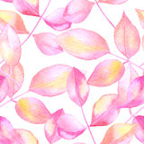 Abstract vector rose leaves watercolor seamless background. Royalty Free Stock Photo