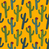 Abstract vector seamless pattern with cactus Stock Images