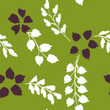 Abstract vector seamless pattern with flowers and leaves Royalty Free Stock Images