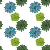 Abstract vector seamless pattern with succelents Stock Images