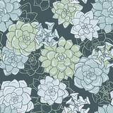 Abstract vector seamless pattern with succulentes Stock Images