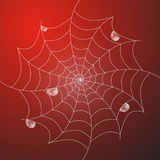 Abstract Vector Wit Spinneweb Stock Foto's