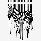 The abstract vector zebra silhouette Stock Photos