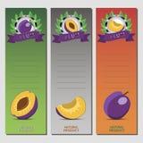 Abstract vectorillustratieembleem voor gehele rijpe fruit purpere pruim Stock Afbeelding