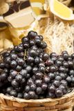 Abstract vers fruit Royalty-vrije Stock Fotografie