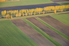 Abstract View of Agricultural Fields and Tree Line. Aerial view of fields and lines of crops and harvested areas Royalty Free Stock Images
