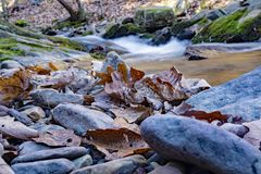 Abstract View of Roaring Run Creek royalty free stock photography
