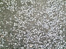 Abstract view of small gray stones. Small grey stones scattered across a dirt path. The photo is on varying tones of grey, with the edges blurred Stock Image
