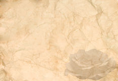 Abstract vintage background. (old crumpled paper with a rose in the corner Stock Image