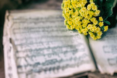 Abstract vintage music background yellow flowers on yellowed music book with worn paper, antique music sheet. Concept of. Abstract vintage music background royalty free stock images