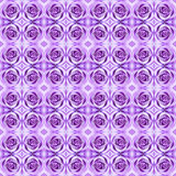 Abstract violet rose pattern background. Royalty Free Stock Photo