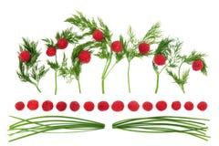 Abstract Voedselart. Royalty-vrije Stock Afbeeldingen