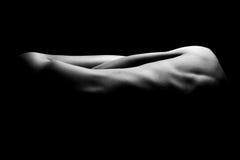 Abstract vrouwelijk lichaam Royalty-vrije Stock Afbeeldingen