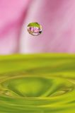 Abstract water drop with flower inside Stock Image