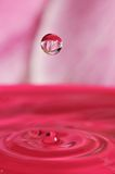 Abstract water drop with flower inside Royalty Free Stock Image