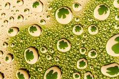 Abstract Water Drops Macro Backgrounds. Abstract background of water drops on glass with green shamrocks reflecting in droplets stock photos