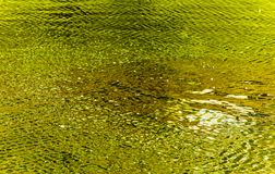 Abstract water fine art. With greens and yellows reflecting on water ripples Stock Photography