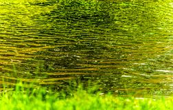 Abstract water fine art. With greens and yellows reflecting on water ripples Stock Photos