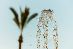 Abstract water wave drop in motion with palm tree and blue sky background Stock Photos