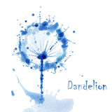 Abstract Watercolor art hand paint background with flower dandelion