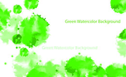 Abstract watercolor background. Abstract  green and white watercolor background Stock Photos