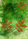 Abstract watercolor background and leaves. Mixed media Royalty Free Stock Photos