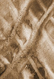 Abstract watercolor background on paper texture. In Sepia toned. Royalty Free Stock Images