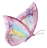 Abstract Watercolor hand drawn butterfly Stock Image