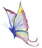 Abstract Watercolor hand drawn butterfly Royalty Free Stock Photography