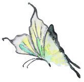 Abstract Watercolor hand drawn butterfly Royalty Free Stock Photos