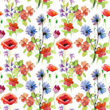 Abstract watercolor hand painted background with flowers. Royalty Free Stock Images