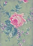 Abstract watercolor illustration of antique vintage rose Stock Photo