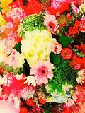 Abstract watercolor illustration of flower bouquets Royalty Free Stock Photo