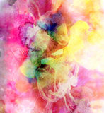 Abstract watercolor multicolored background Royalty Free Stock Images