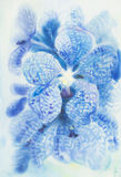 Abstract watercolor original painting blue color of vanda coerulea flower. In abstract background Stock Illustration