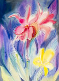 Abstract watercolor original painting colorful of canna lily flowers. And green leaves in blue background Stock Images