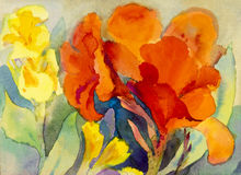 Abstract watercolor original painting colorful of canna lily flowers. And green leaves painting on paper Stock Illustration