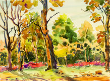 Abstract watercolor original painting colorful of flowers garden. Tree and grass with nature autumn trees,roadside background. Painted Impressionist, abstract Royalty Free Stock Image