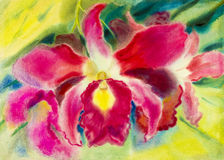 Abstract watercolor original painting  colorful of orchid flower. And green leaves in blue background Stock Images