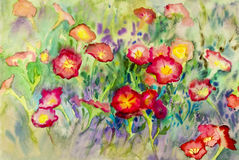 Abstract watercolor original painting colorful of petunia flower Royalty Free Stock Photo