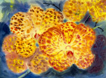 Abstract watercolor original painting orange color of orchid flowers. Abstract watercolor original painting orange color of orchid flowers and emotion in blue Stock Photo