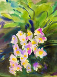 Abstract watercolor original painting pink color of orchid flower. And  emotion in green leaves background Stock Image