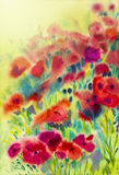 Abstract watercolor original painting red color of morning glory. Flower and green leaves in sky sunlight background Royalty Free Stock Images