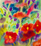 Abstract watercolor original painting red color of petunia flowers. And emotion in green leaves  background Royalty Free Stock Images
