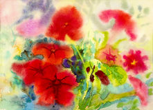 Abstract watercolor original painting red color of petunia flowers. And emotion in green leaves  background Stock Image