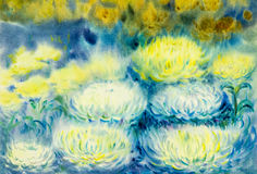 Abstract watercolor original painting white color of Chrysanthemum. Flower and green leaves in blue background Stock Image