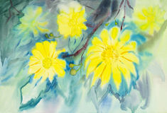 Abstract watercolor original painting yellow color of Tree marigold flower. And green leaves in blue background Royalty Free Illustration