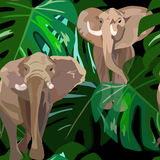 Abstract watercolor paint two elephant in green leaves MONSTERA. Tropical floral Indian forest on the black background, color Fashion design print, animals royalty free illustration