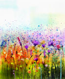 Abstract Watercolor Painting Purple Cosmos Flower, Cornflower, Violet Lavender, White And Orange Wildflower Stock Photo